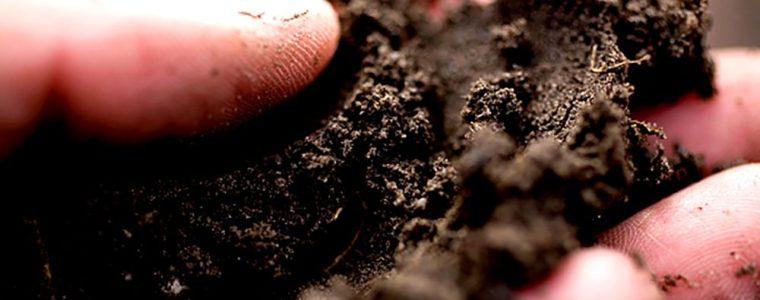 waste classification soil newcastle hunter valley